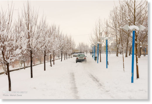 Seventeen provinces of Iran have been stricken by heavy snow storm over the past 24 hours, Rescue and Relief Organization head Morteza Salimi has said.