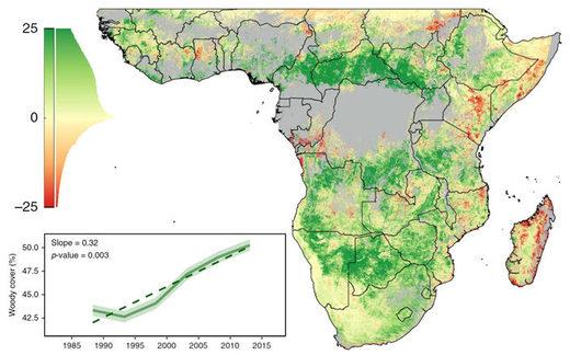 CO2 rise shrinks Sahara Desert by whopping 8%! 700,000 sq km of ...