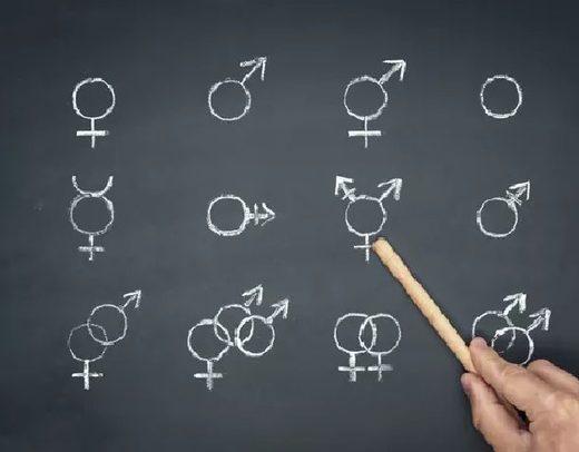 genders school