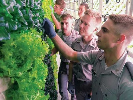 Cadets gain hands-on experience