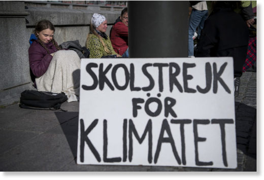Thunberg's early protests