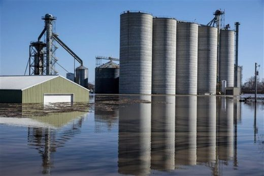 Bartlett Grain Company grain elevators are surrounded by floodwaters in Hamburg, Iowa