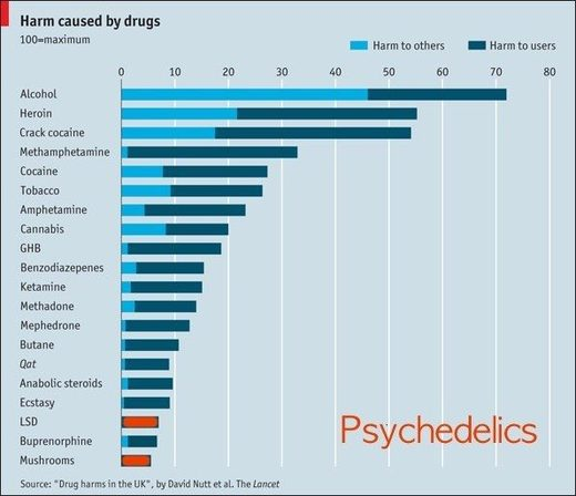 harm caused by psychedelics