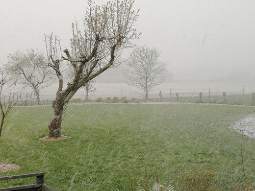 netherlands snow april