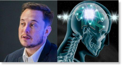 elon_musk_scientists_brain_pro.jpg