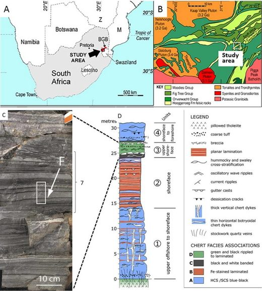 organic molecules ancient earth south africa
