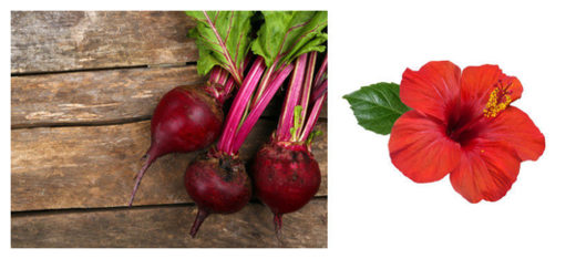 Beetroot and Hibiscus