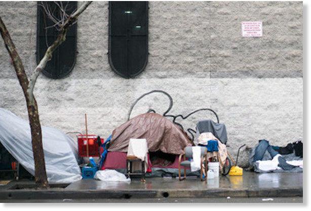 Bubonic Plague in Los Angeles? -- Health & Wellness ...