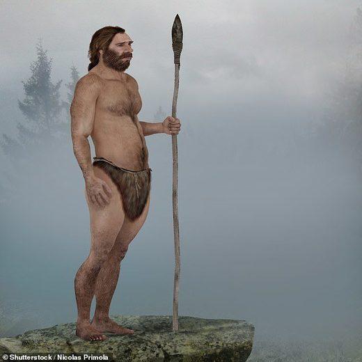spear human