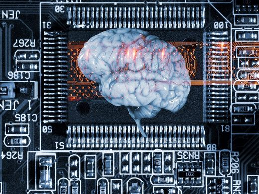 brain circuit board
