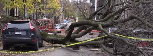Tens of thousands still without power in Quebec, Canada after devastating wind storms