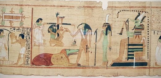 Ancient Egyptian ibises were wild birds