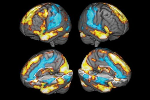 neural correlates of gratitude
