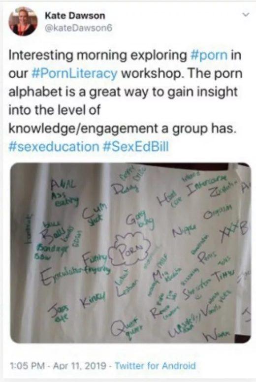 ireland sex education pornography