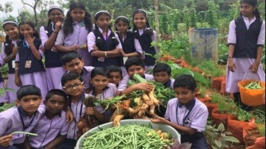 India directs all schools to set up kitchen gardens to improve nutrition and teach kids how to grow food