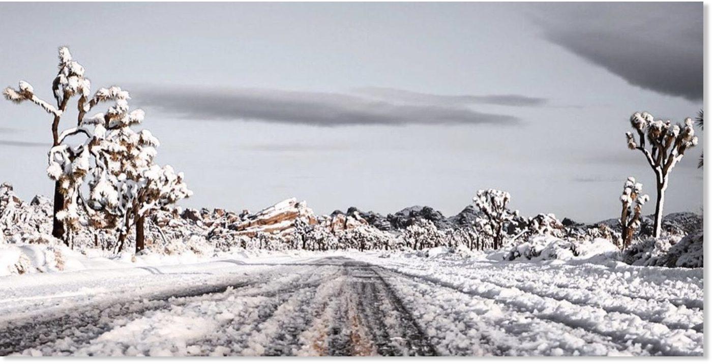Overnight Snowfall Smothers California S High Desert In 8