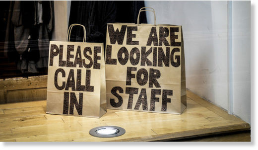 looking for staff bags