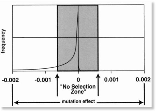 distribution of mutations
