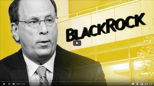 How BlackRock leveraged control of the US economy