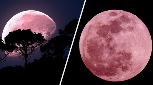 The upcoming 'super pink moon' will be the biggest and best of 2020