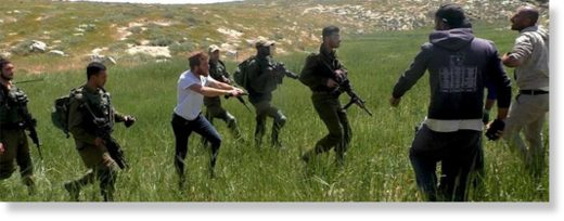 IDF and settlers