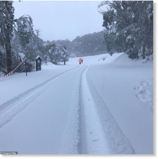 Park rangers in high-vis gear trek through Mount Buller during a blizzard. The cold front will move from the south east and reach as far as Northern Queensland and the Top End, although it will be much less intense once it travels that far