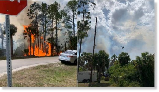 At least 5,000 acres have been after wildfires spread across Southwest Florida on Wednesday.