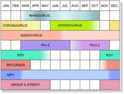 coronavirus family