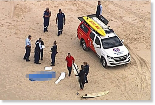 A male surfer has died after being bitten by a shark near Kingscliff in northern NSW