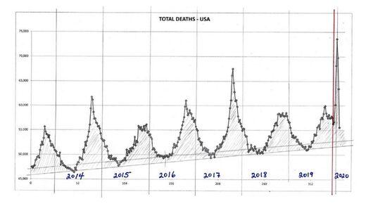 deaths usa covid-19 graph