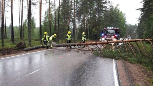 Rescue unit works to clear a fallen tree over a road in Miehikkälä, southeastern Finland