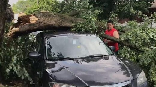Flooding and downed trees reported across Toronto after severe summer storm