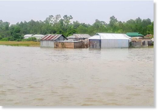 Floodwater reached houses in Rulipara village under Gabsara union of Tangail's Bhuapur upazila on Tuesday, July 14, 2020