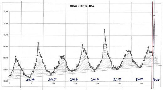 total deaths per year graph usa