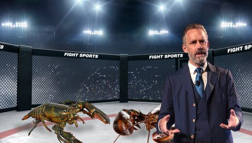 jordan peterson lobster fights babylon bee