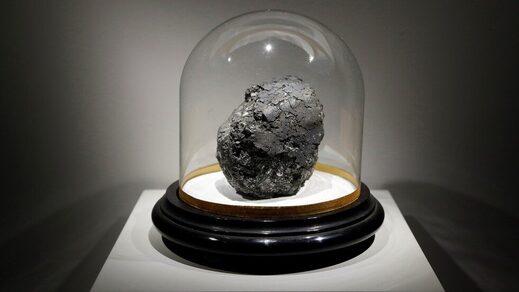 Orgueil meteorite microorganisms fossils