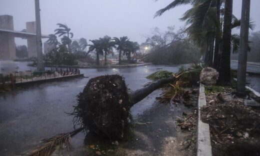 Debris left by Hurricane Delta in Cancún