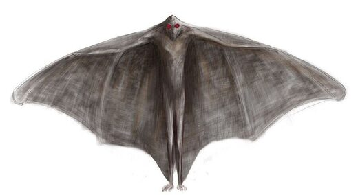 Another Chicago Mothman sighting? USPS employee reports seven-foot-tall, red-eyed creature at O'Hare International Airport