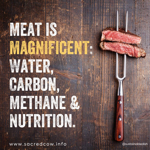 Meat is Magnificent: Water, Carbon, Methane & Nutrition