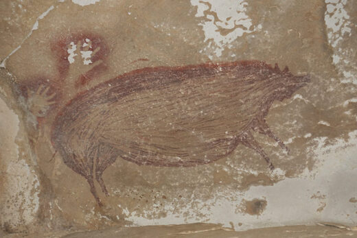cave painting pig