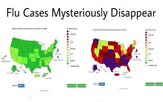 flu cases mysteriously disappear