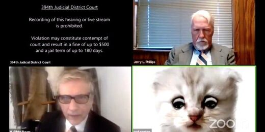 zoom filter cat court hearing
