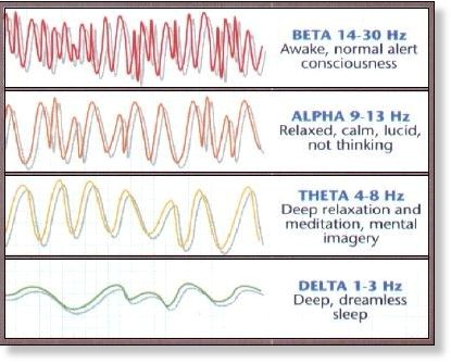 Theta waves: Brain state affects memory recall -- Science of the