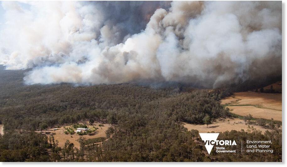 Bushfire_in_Victoria_December_.jpg