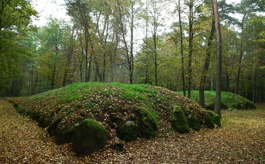 Ancient settlements associated with 'Polish Pyramids' discovered