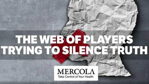 web of players mercola header