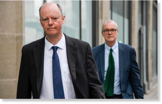 Chris Whitty, left, and Sir Patrick Vallance have been responsible for predictions that have terrified the public