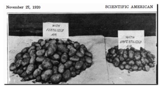 Scientific American Article