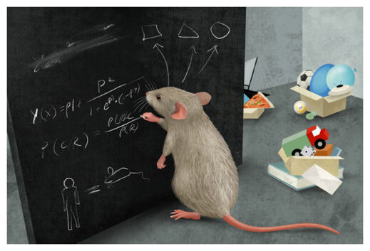 Mice Einstein