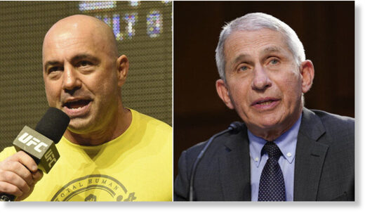 rogan and fauci